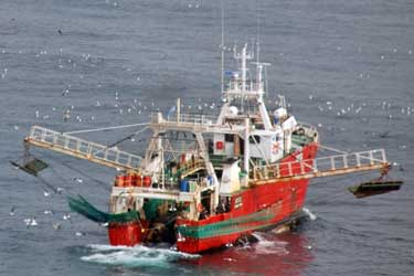 Chinese Market Helps Argentine Seafood Exports Exceed U.S. $2 billion in 2017