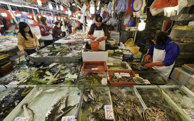 China Increased its Seafood Imports 42% in January; Seafood Exports Drop During Same Month