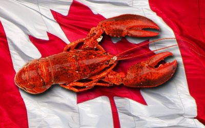 Optimism Abounds for Canadian Lobsters in China as Tariffs Drop