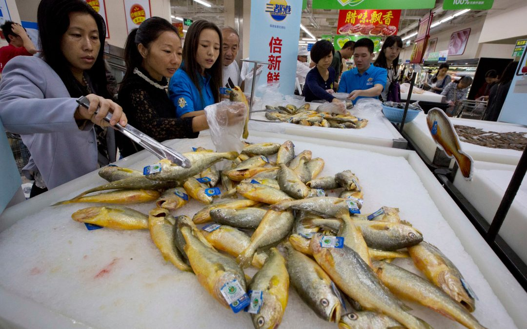 Frozen Seafood is a Rising Star in China's Sam's Clubs