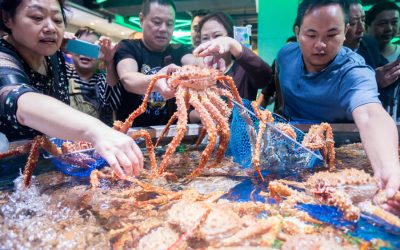All eyes on China as Russian firms seek return on crab auction investment